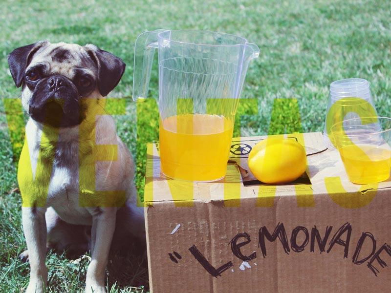 venta-limonadas