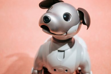aibo-robot-dog1.jpeg