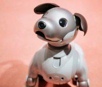 Mascotas robot programables: perro robot Aibo