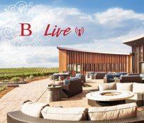 Degustaciones de vinos virtuales personalizados: bouchaine