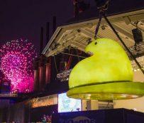 Festivales virtuales de Nochevieja: caída de fin de año