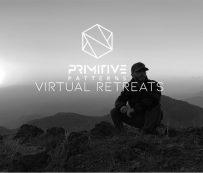 Retiros virtuales de salud: patrones primitivos